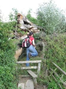 Pluckley Walk - Walking in Kent